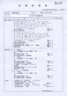 29-Meisai 04